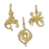 14k Zodiac Sign Charms